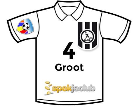 Shirt elftal van het jaar_groot1